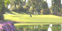 tenerife-mondo-golf