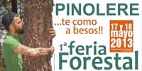 orotava-fiera-forestal