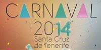 carnevale-tenerife-2014-tmb