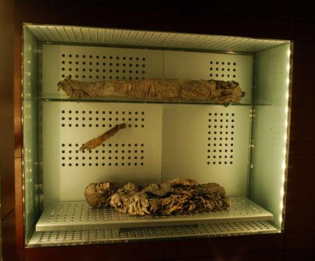 cabildo-mummie