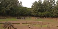 orotava-parque-forestal-aventuras1