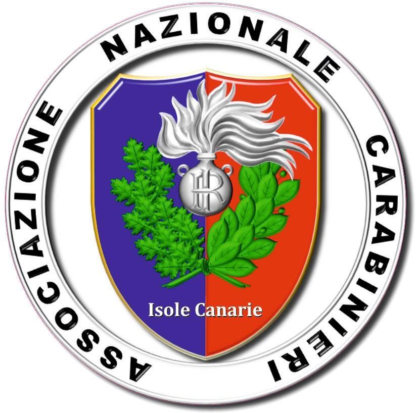 Il saluto del presidente dell ass nazionale carabinieri - Canarie offerte immobiliari ...
