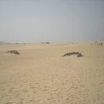 dune-fuerteventura-canarie.JPG